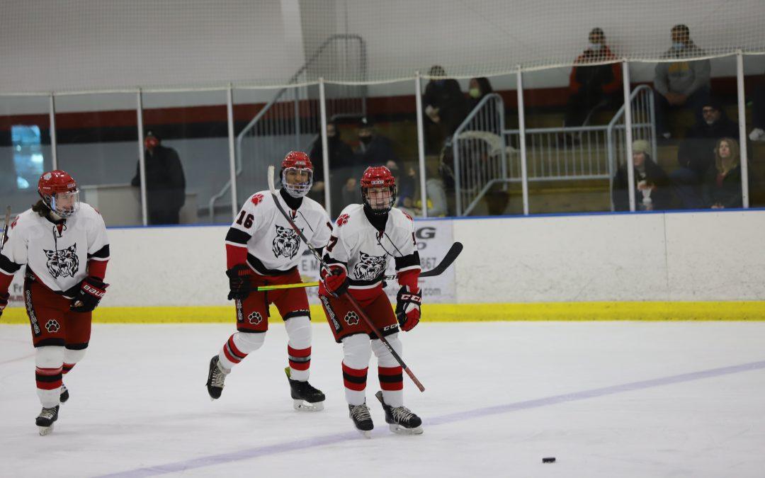 Bobcat Hockey Defeats Flushing 8-0 2.20.21